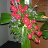 Fleuriste Ensoleillé